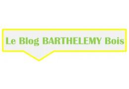 Blog Barthelemybois.com